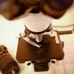 Microscopio ottico presso lo Studio Medico di dermatologia e tricologia B. M. PIraccini